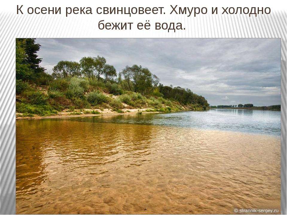 К осени река свинцовеет. Хмуро и холодно бежит её вода.