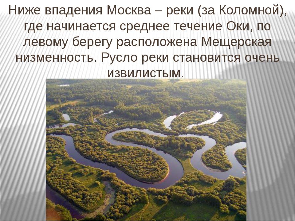 Ниже впадения Москва – реки (за Коломной), где начинается среднее течение Оки...