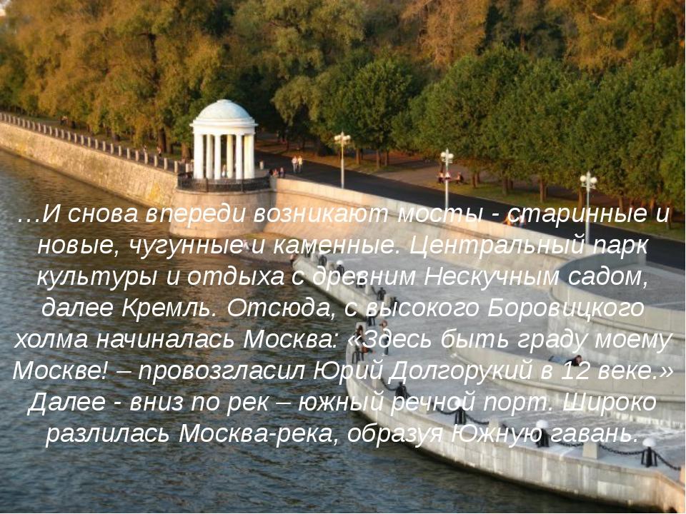 …И снова впереди возникают мосты - старинные и новые, чугунные и каменные. Це...