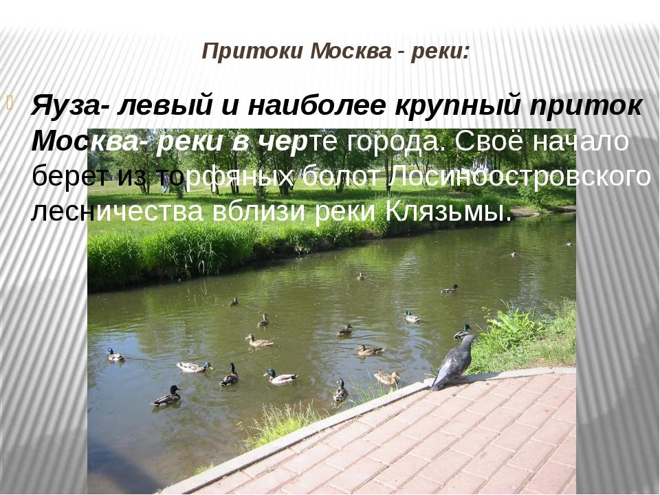 Притоки Москва - реки: Яуза- левый и наиболее крупный приток Москва- реки в ч...
