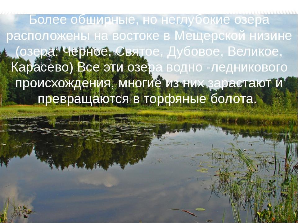 Более обширные, но неглубокие озера расположены на востоке в Мещерской низине...