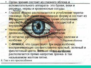Орган зрения состоит из глазного яблока и вспомогательного аппарата- это бров