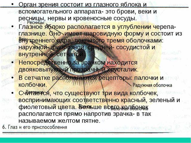 Орган зрения состоит из глазного яблока и вспомогательного аппарата- это бров...