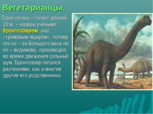 Вегетарианцы. Один из них – гигант длиной 20 м. – назван учёными бронтозавром