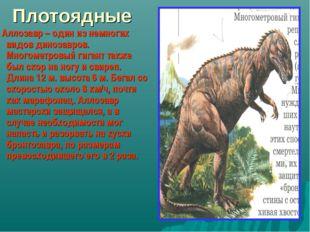 Плотоядные Аллозавр – один из немногих видов динозавров. Многометровый гигант