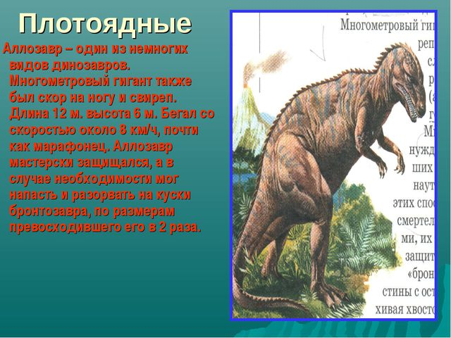 Плотоядные Аллозавр – один из немногих видов динозавров. Многометровый гигант...
