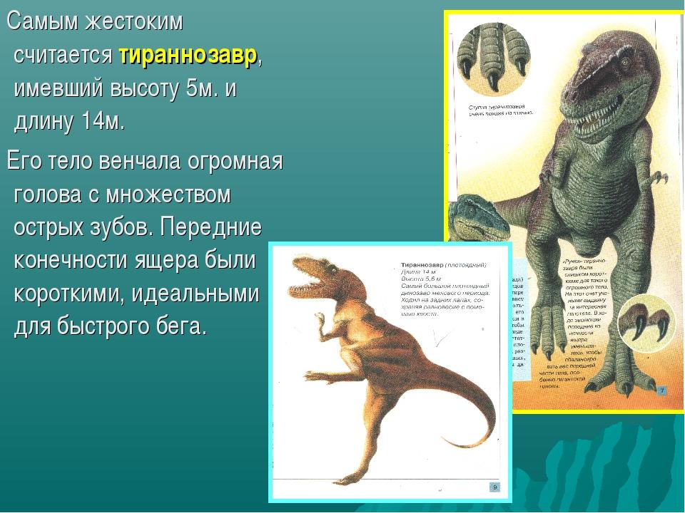 Самым жестоким считается тираннозавр, имевший высоту 5м. и длину 14м. Его те...