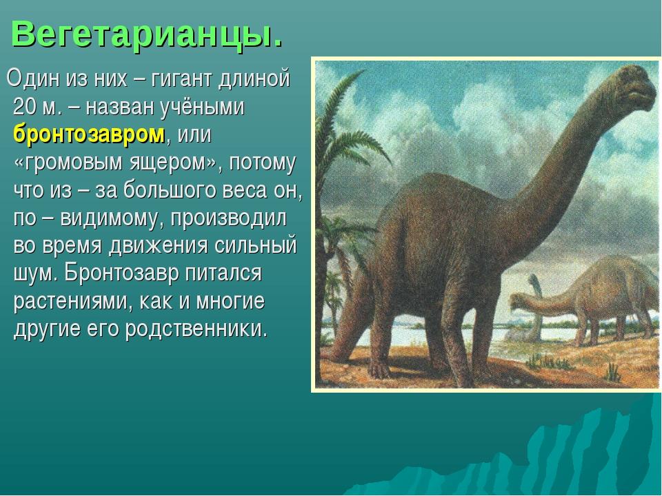 Вегетарианцы. Один из них – гигант длиной 20 м. – назван учёными бронтозавром...