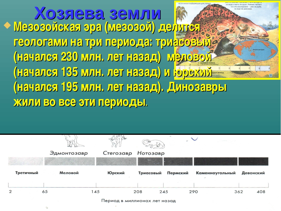 Хозяева земли Мезозойская эра (мезозой) делится геологами на три периода: три...