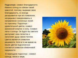 Подсолнух- символ благодарности. Именно солнцу он обязан своей красотой, поэт