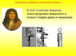 В XVII столетии Левенгук сконструировал микроскоп и открыл людям дверь в микр