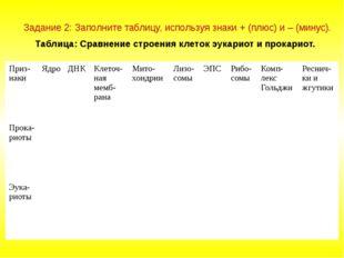 Задание 2: Заполните таблицу, используя знаки + (плюс) и – (минус). Таблица: