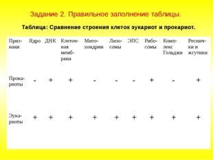 Задание 2. Правильное заполнение таблицы. Таблица: Сравнение строения клеток