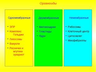 Органоиды Одномембранные ЭПР Комплекс Гольджи Лизосомы Вакуоли Реснички и жгу