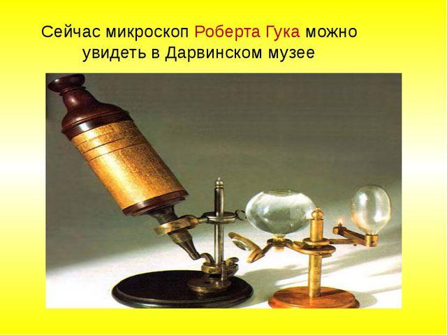 Сейчас микроскоп Роберта Гука можно увидеть в Дарвинском музее