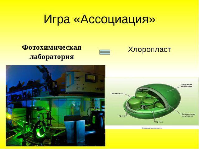 Игра «Ассоциация» Фотохимическая лаборатория Хлоропласт