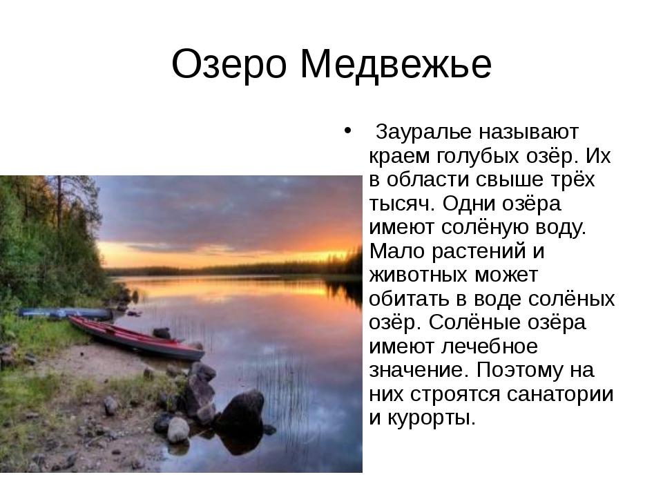 Озеро Медвежье Зауралье называют краем голубых озёр. Их в области свыше трёх...