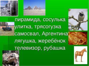 пирамида, сосулька улитка, трясогузка самосвал, Аргентина лягушка, жеребёнок