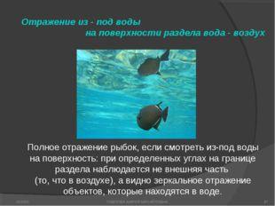 Отражение из - под воды на поверхности раздела вода - воздух Полное отражение