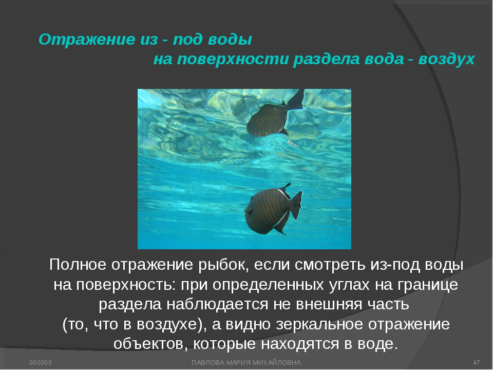 Отражение из - под воды на поверхности раздела вода - воздух Полное отражение...