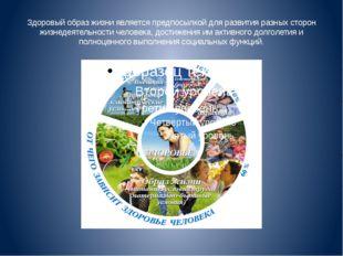 Здоровый образ жизни является предпосылкой для развития разных сторон жизнеде