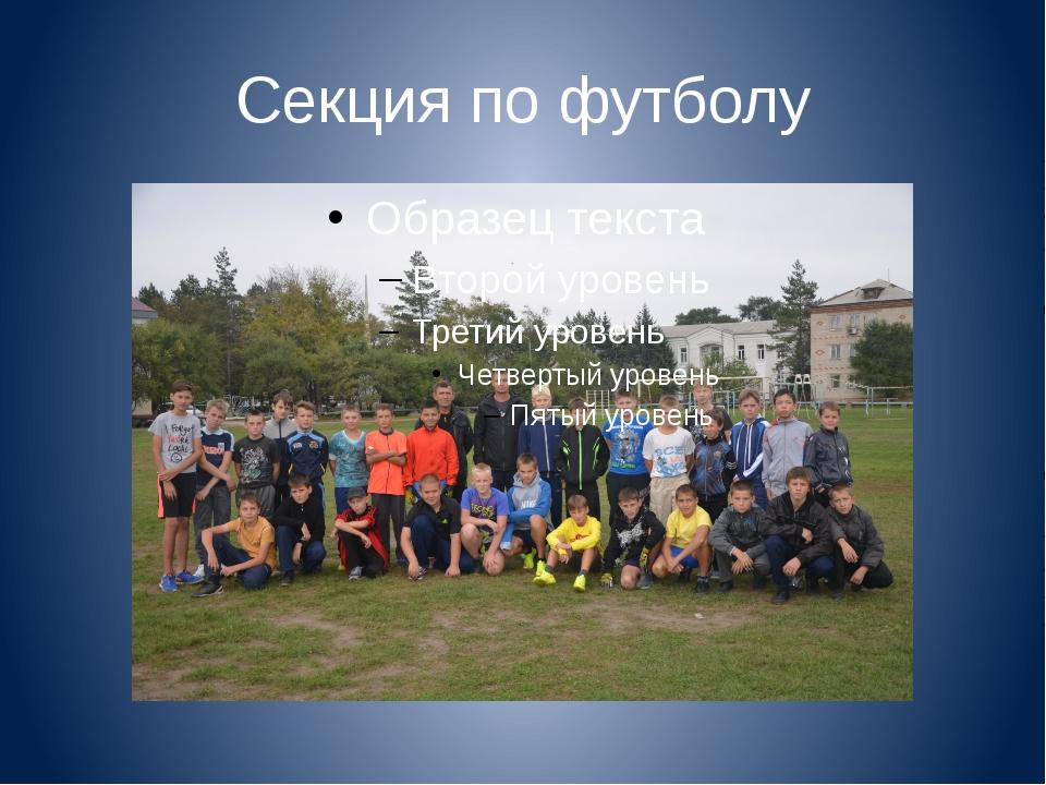 Секция по футболу
