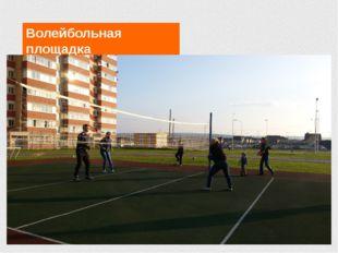Волейбольная площадка Проживание и питание в школе