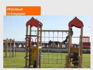Игровые площадки Проживание и питание в школе