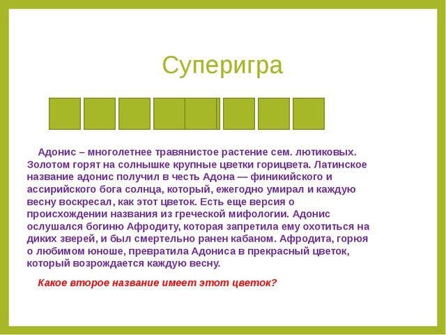 Суперигра Адонис – многолетнее травянистое растение сем. лютиковых. Золотом г...