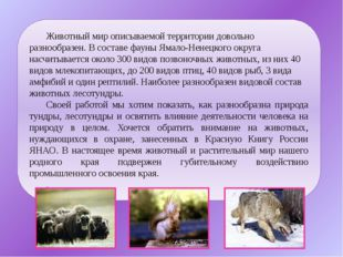 Животный мир описываемой территории довольно разнообразен. В составе фауны Ям