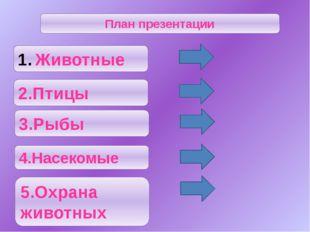 Рыбы Из всех северных рек России Обь - самая рыбная. Рыбы Севера - это прежд
