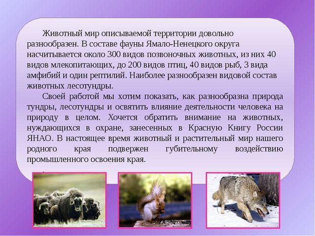 Животный мир описываемой территории довольно разнообразен. В составе фауны Ям...