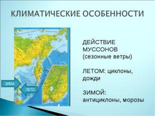 ДЕЙСТВИЕ МУССОНОВ (сезонные ветры) ЛЕТОМ: циклоны, дожди ЗИМОЙ: антициклоны,