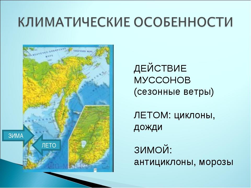 ДЕЙСТВИЕ МУССОНОВ (сезонные ветры) ЛЕТОМ: циклоны, дожди ЗИМОЙ: антициклоны,...