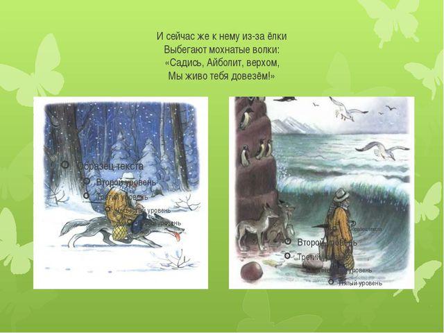 И сейчас же к нему из-за ёлки Выбегают мохнатые волки: «Садись, Айболит, верх...
