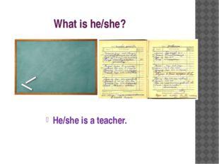 What is he/she? He/she is a teacher.