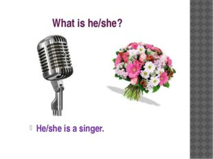 What is he/she? He/she is a singer.