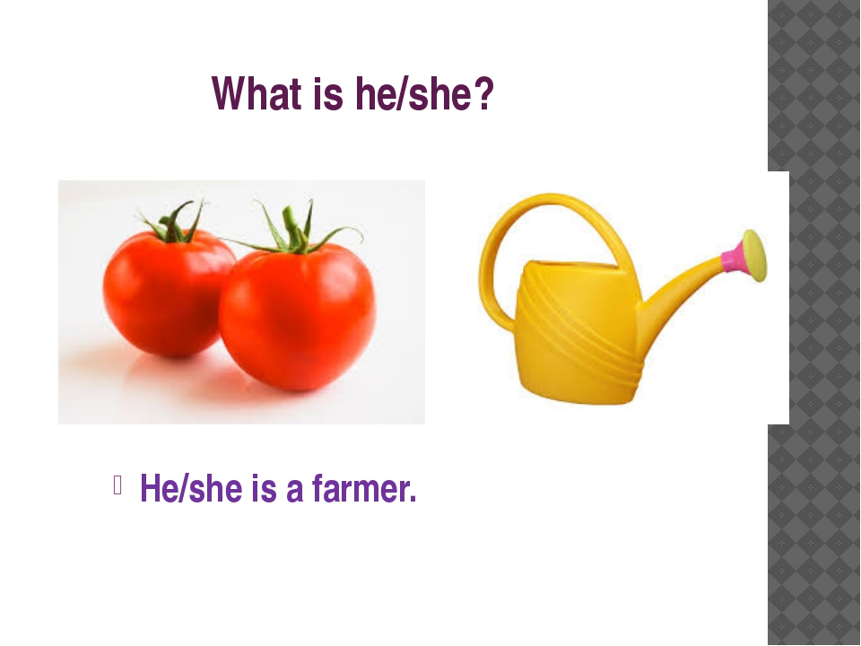 What is he/she? He/she is a farmer.