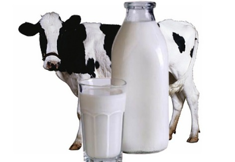 G:\Новая папка\домашнее молоко 2.jpg