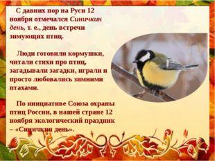 С давних пор на Руси 12 ноября отмечалсяСиничкин день, т. е., день встречи