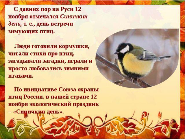 С давних пор на Руси 12 ноября отмечалсяСиничкин день, т. е., день встречи...
