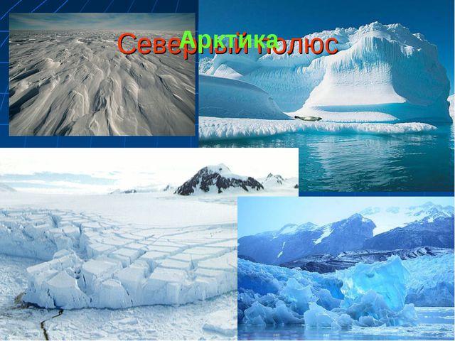 Северный полюс Арктика