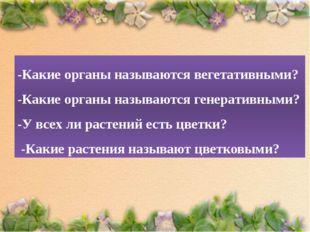 -Какие органы называются вегетативными? -Какие органы называются генеративным