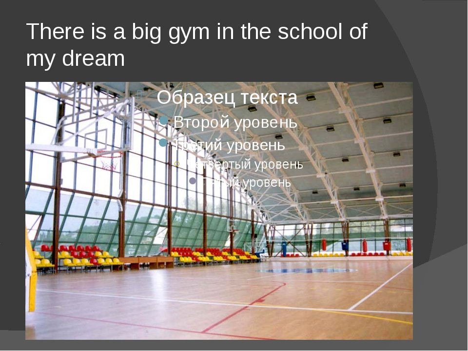 There is a big gym in the school of my dream