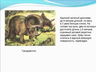Трицератопс Крупный рогатый динозавр до 8 метров длиной, по весу в 2 раза бол