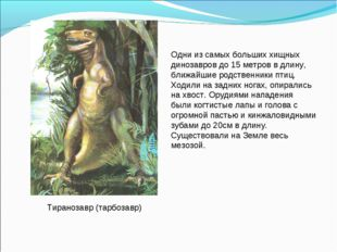 Тиранозавр (тарбозавр) Одни из самых больших хищных динозавров до 15 метров в