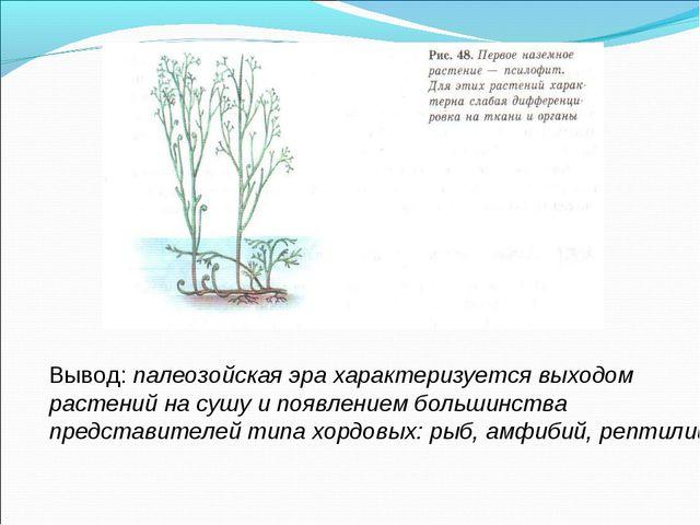 Вывод: палеозойская эра характеризуется выходом растений на сушу и появлением...