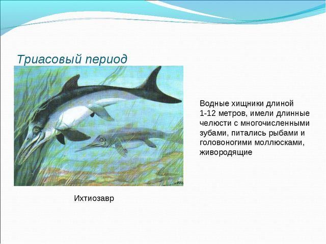 Триасовый период Ихтиозавр Водные хищники длиной 1-12 метров, имели длинные ч...
