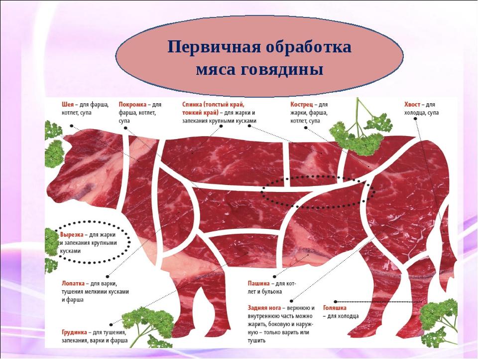 Первичная обработка мяса говядины