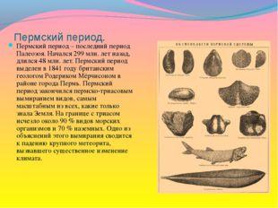 Пермский период. Пермский период – последний период Палеозоя. Начался 299 млн